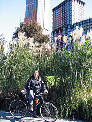 Me on my bike in front of some huge grasses